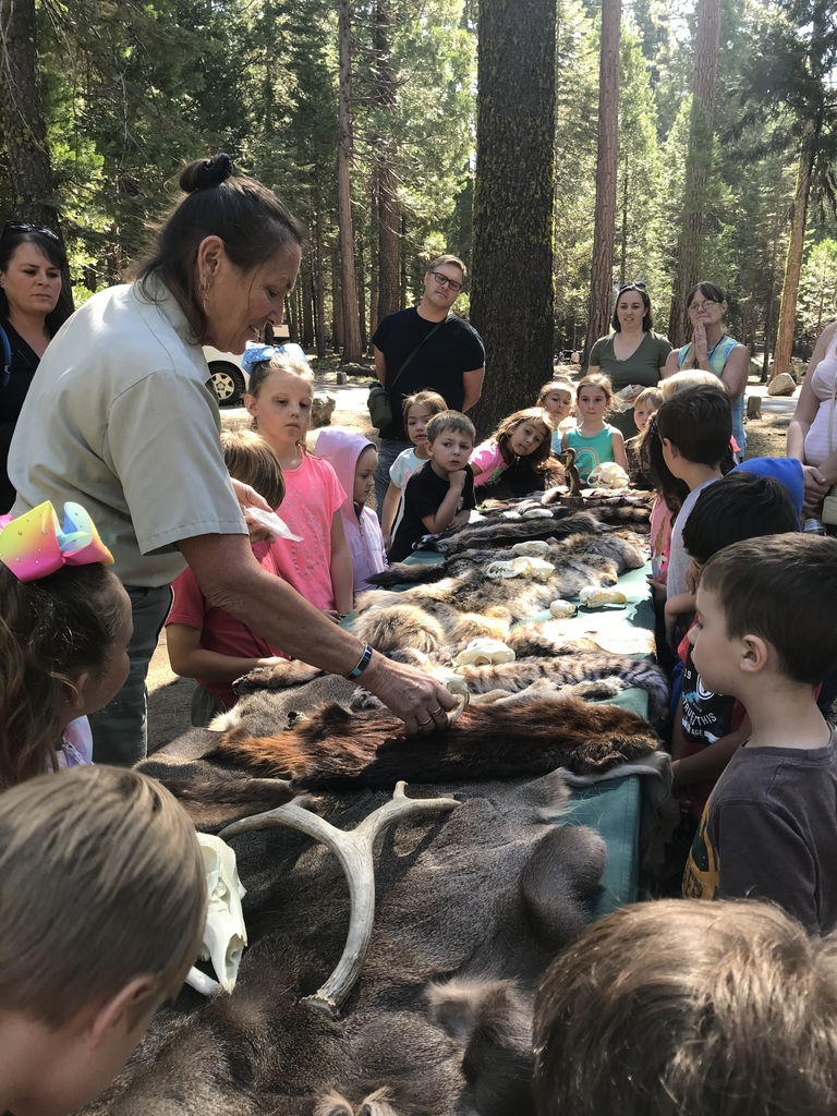 Learning about the animals in the Stanislaus!